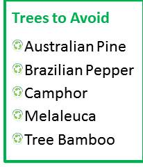 Trees to Avoid