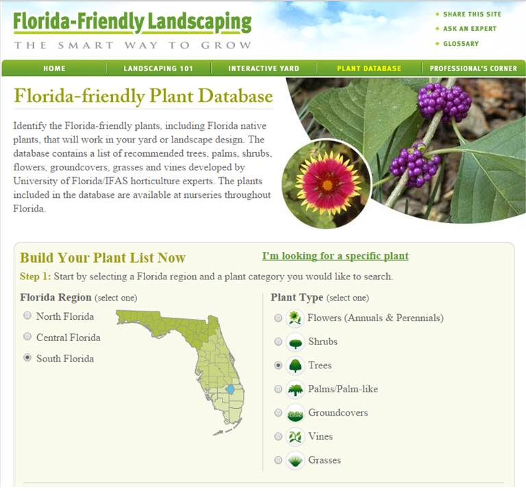 Friendly Find For Your Job Search: City Of Fort Lauderdale, FL : Find Florida-Friendly Plants