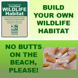 Wildlife Habitat and No Butts on the Beach