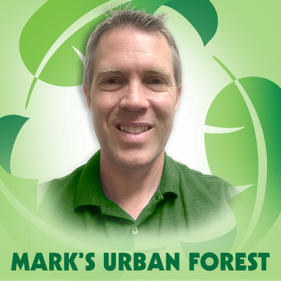 3881 Mark Williams Urban Forester Blog Graphics