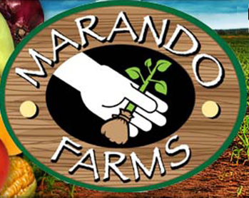 Marando Farms Logo